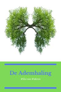 In de Mindfulness MBSR training maken we contact met onze ademhaling en verbinden deze bewust met ons lichaam. We merken hoe ademhaling onze stemming en gedachtes kan beïnvloeden. En, hoe we zelfs de beweging van ons lijf kunnen veranderen. Mindfulness | MBSR | MBCT | Training | Bewustzijn | Mindfulness Veenendaal | Veenendaal | Stressreductie | Burnout | Aandachtstraining | Vermoeidheid | Wilco   #Mindfulness #MBSR #MBCT #Training #Bewustzijn #Veenendaal #Stressreductie #Burnout #Aandachtstraining #Vermoeidheid #Wilco