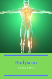 In de Mindfulness MBSR training maken we contact met ons lichaam. We merken hoe ademhaling onze stemming en gedachtes kan beïnvloeden. En, hoe we zelfs de beweging van ons lijf kunnen veranderen. Mindfulness | MBSR | MBCT | Training | Bewustzijn | Mindfulness Veenendaal | Veenendaal | Stressreductie | Burnout | Aandachtstraining | Vermoeidheid | Stiltedag | Bodyscan | Wilco   #Mindfulness #MBSR #MBCT #Training #Bewustzijn #Veenendaal #Stressreductie #Burnout #Aandachtstraining #Vermoeidheid #Stiltedag #Wilco #Bodyscan