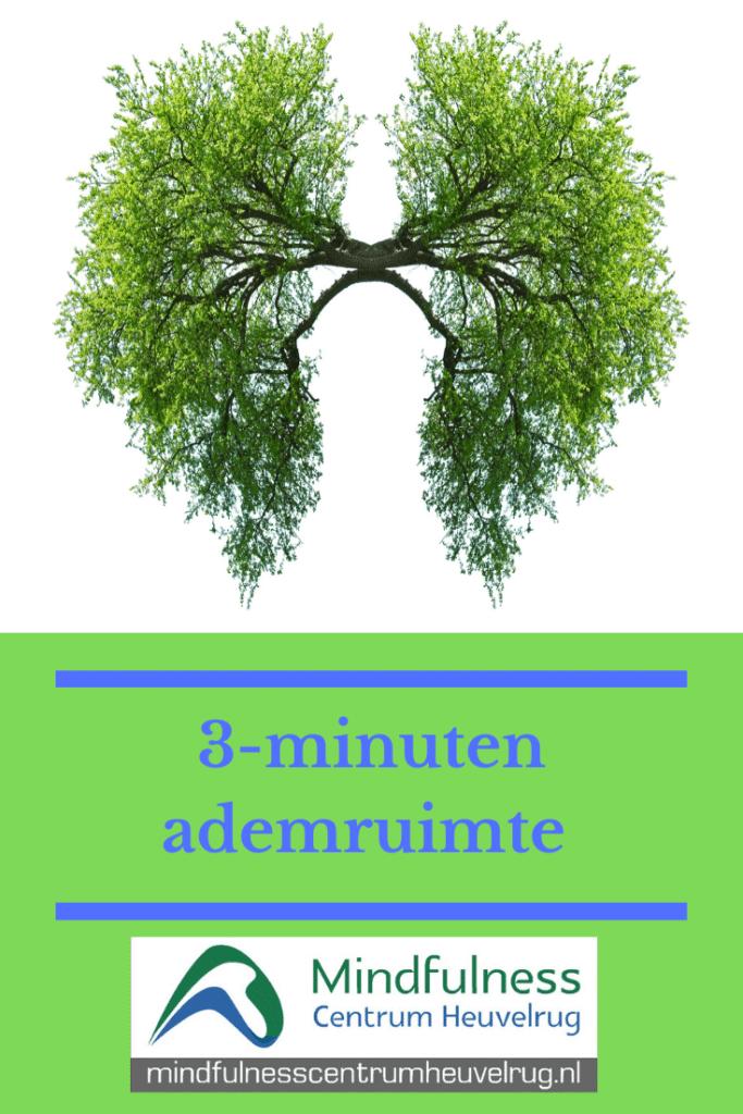 Mindfulness | MBSR | MBCT | Training | Bewustzijn | Mindfulness Veenendaal | Veenendaal | Stressreductie | Burn-out | Aandachtstraining | Vermoeidheid | Ademruimte | Wilco  #Mindfulness #MBSR #MBCT #Training #Bewustzijn #Veenendaal #Stressreductie #Burn-out #Aandachtstraining #Vermoeidheid #Wilco  #Ademruimte